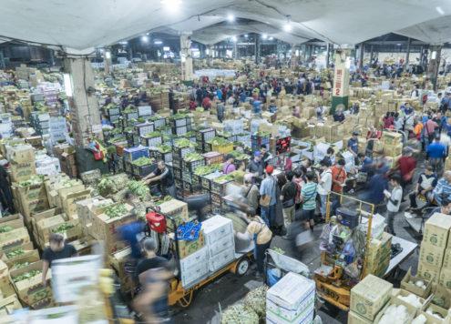 台北果菜市場 台北漁市場