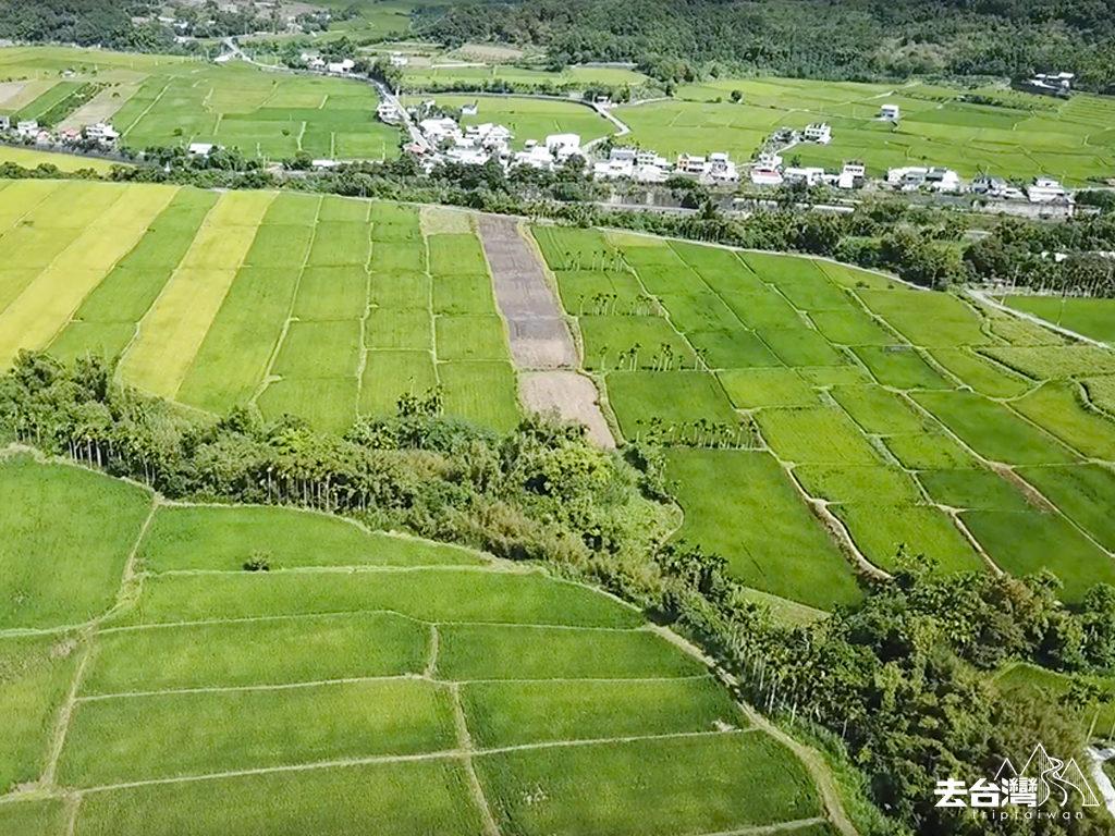 花蓮縱谷景點