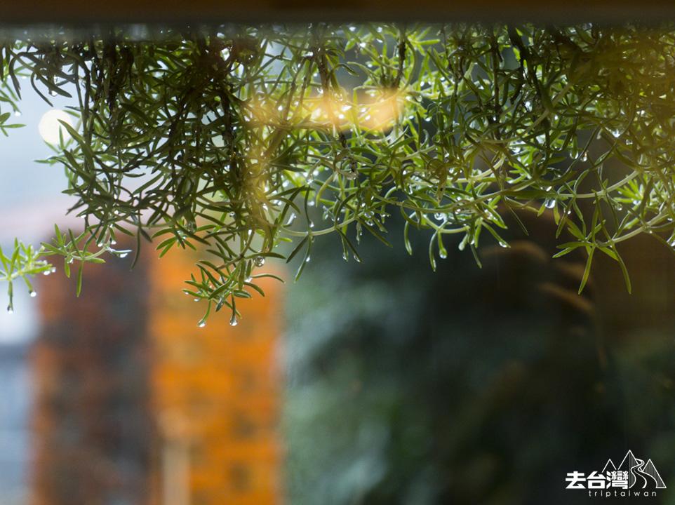 台北自由行 九份金瓜石 散散步咖啡